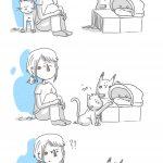 // Les chats sont formidables !!